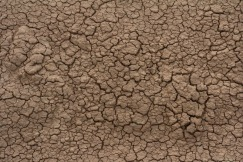 cracked-dirt-texture-2